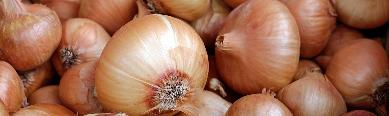 Moisture Protection Keeps Onions Dry, Mold-Free During Cross-Country Trek